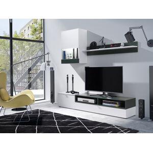 Obývací stěna PAT Barva nábytku: Bílý mat/lahvově zelená